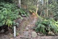 瓶割山(長光寺山)不二滝ルート-登り口階段