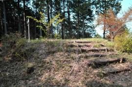 北出盆の木跡-2