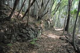 観音寺城-山裾05