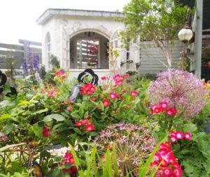 新横浜駅からもほど近い篠原町・金子さんのBerry's Garden。今年はバラの開花が遅く、開催時に見頃になるかに注目が集まりそう(写真は昨年の開催時の様子・港北オープンガーデン運営委員会提供)