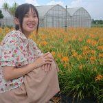 今帰仁クワンソウの花が見ごろ 花畑散策や花摘み体験、新たな観光スポット定着なるか