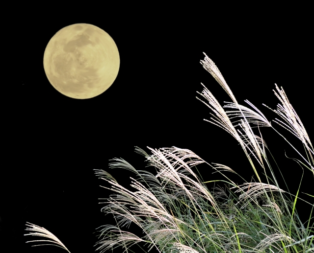 満月とススキ