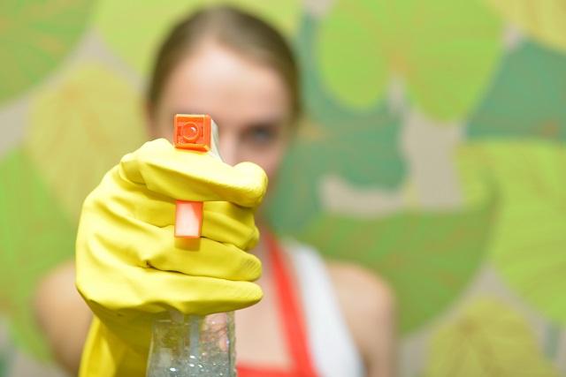 掃除のスプレーを持つ女性