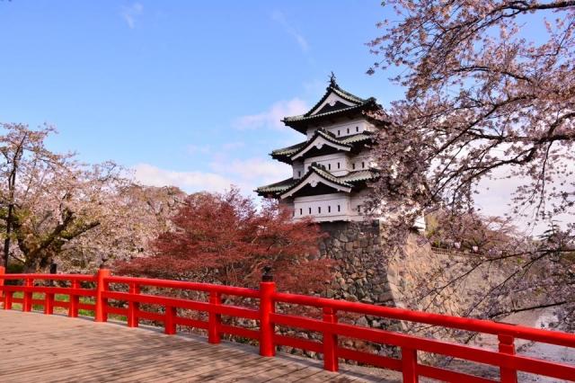 桜と弘前城