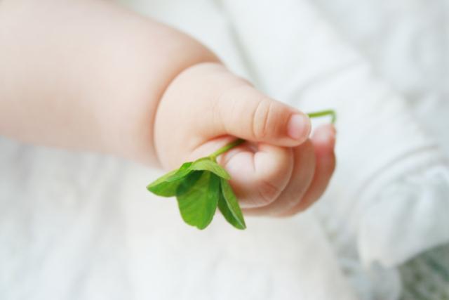 四葉のクローバーを持つ赤ちゃんの手