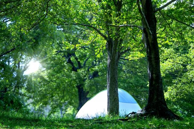 野山にはったテント