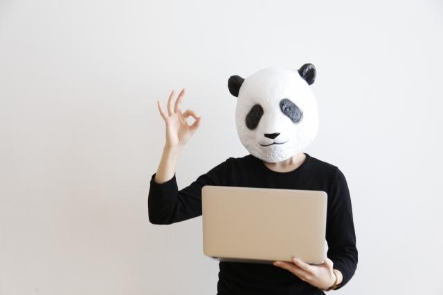 問題を解決したパンダの仮面をかぶった人