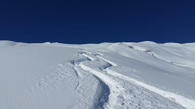 スキーを滑った後の雪