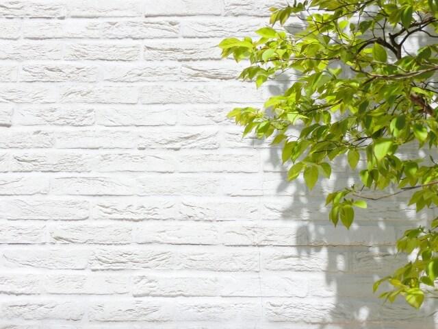 白いレンガの家の外壁と木の葉っぱ