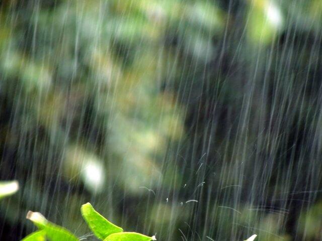 強い雨が降る様子
