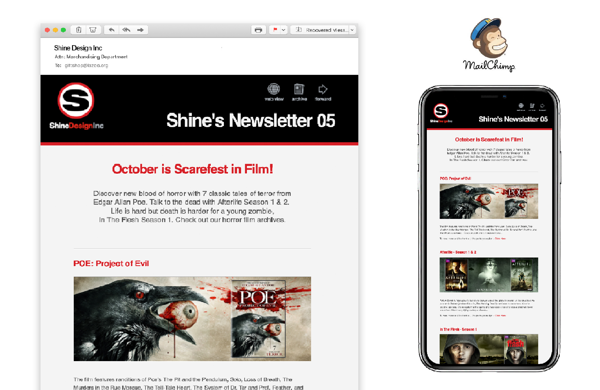 Shine Design Mailchimp Newsletter