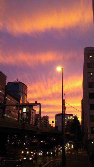 Evening_101911