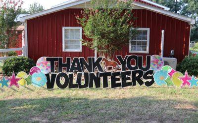 Volunteer Celebration