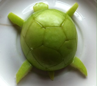 Turtle made by Apple