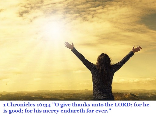 "1 Chronicles 16:34 ""O give thanks unto the LORD; for he is good; for his mercy endureth for ever."""