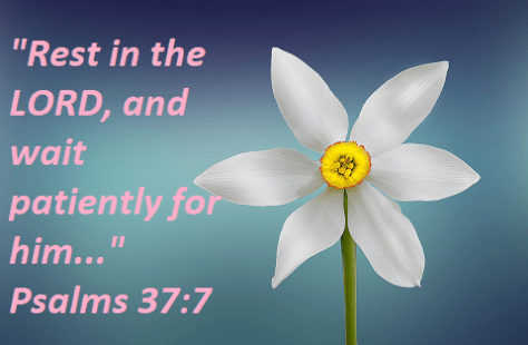 """Psalms 37:7a """"Rest in the LORD, and wait patiently for him..."""""""