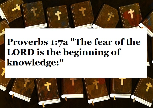 """Proverbs 1:7a """"The fear of the LORD is the beginning of knowledge:"""""""