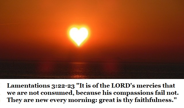 """Lamentations 3:22-23 """"It is of the LORD's mercies that we are not consumed, because his compassions fail not. They are new every morning: great is thy faithfulness."""""""