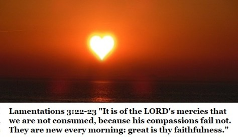 "Lamentations 3:22-23 ""It is of the LORD's mercies that we are not consumed, because his compassions fail not. They are new every morning: great is thy faithfulness."""