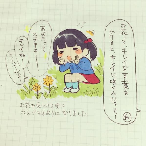 f:id:shinoegg:20171114214850j:plain