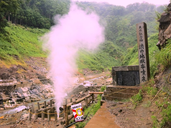 国の天然記念物「渋の地獄谷噴泉」