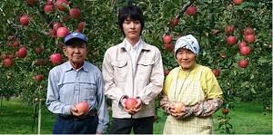 りんご|こだわり|樹上完熟|マルサ果樹園