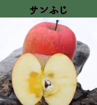 サンふじ|りんご|減農薬|通販