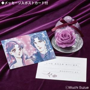 紫のバラ 画像