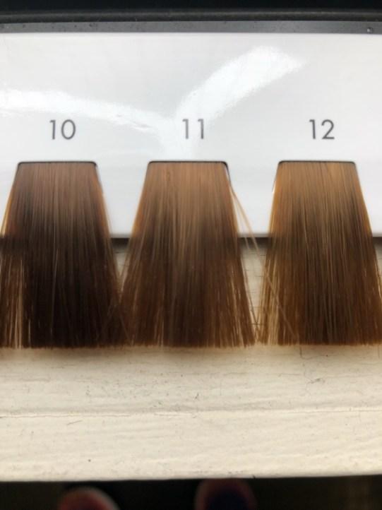 10〜12トーンのヘアカラーのレベルスケール