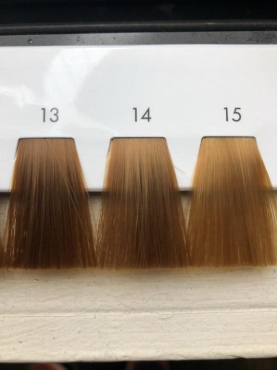 13〜15トーンのヘアカラーのレベルスケール