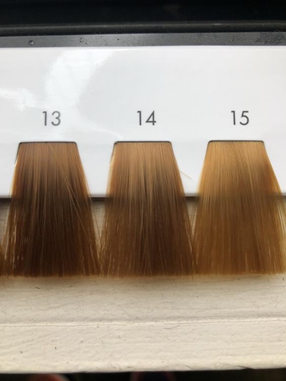 13トーンから15トーンの髪の毛