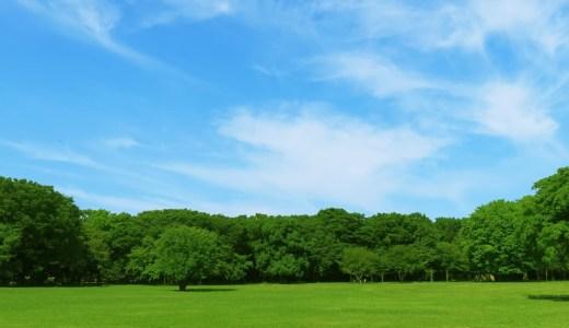 新百合ヶ丘で子供と一緒に出かけるおすすめの公園10選!