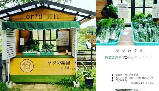 野菜の直売所「ジジの菜園」は、農薬不使用・採れたて野菜が100円や200円