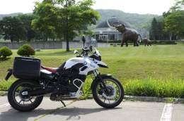 北海道 ナウマン象