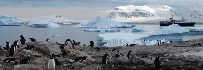 Antarctica-Bucket-List-3