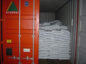 bagged cargo in container - Cargo types and packing method in containers