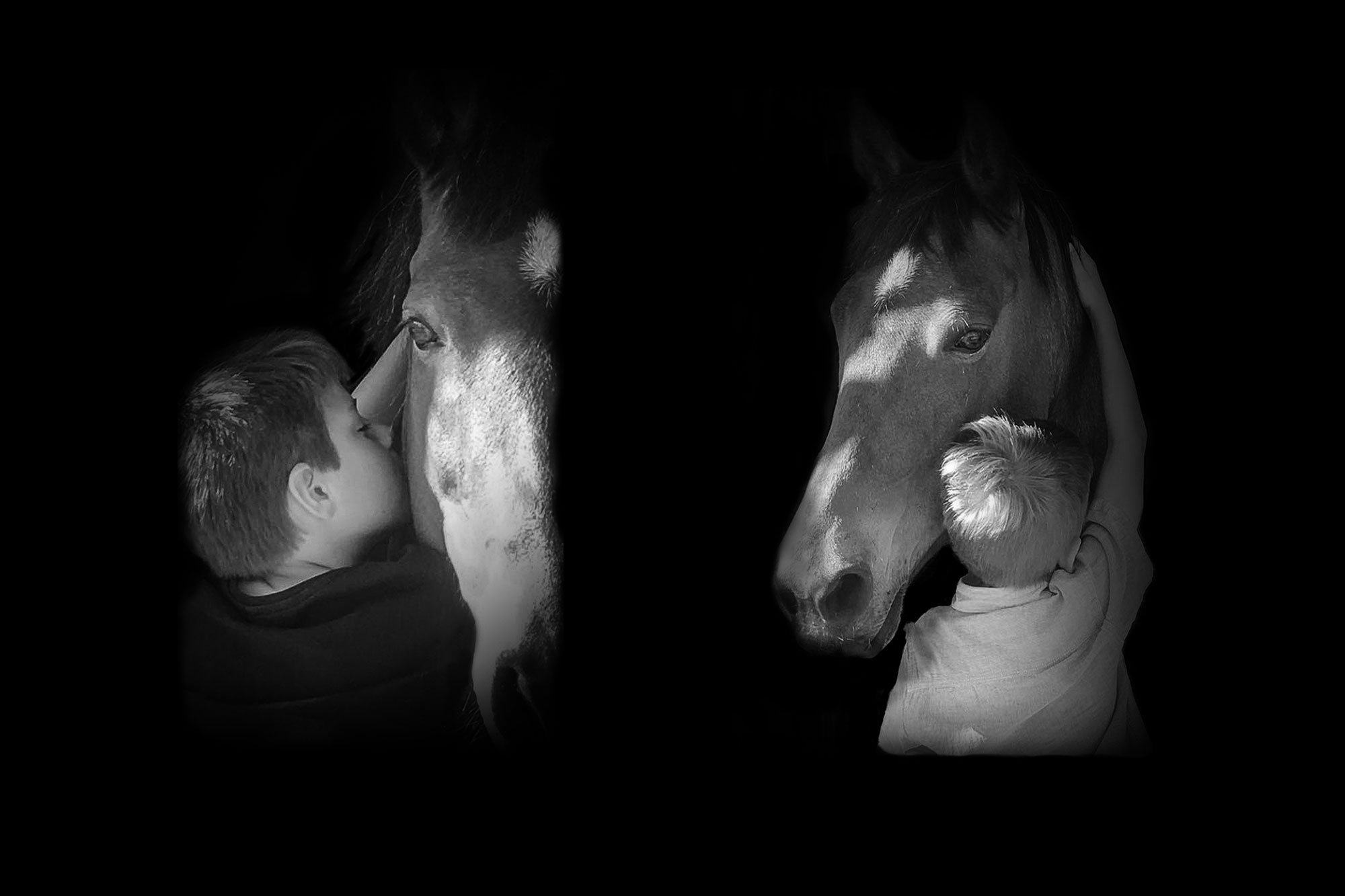 Pony love portrait in black and white