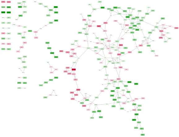TF network Pearson 0.7