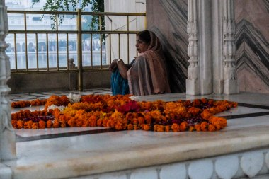 A devotee at the Golden Temple,
