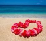 ハワイ語の名付けブーム到来!名前に適したハワイ語を調査