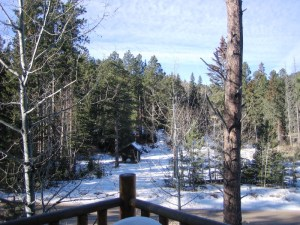 View from Daisy's Cabin.
