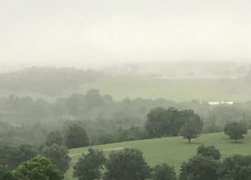 June 23, 2018, misty morning