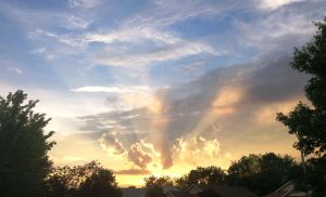 Photo Friday- God's Artistry