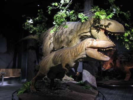 加拿大自然博物院内的恐龙模型