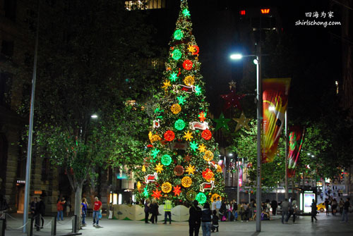 Giant Christmas tree in Sydney