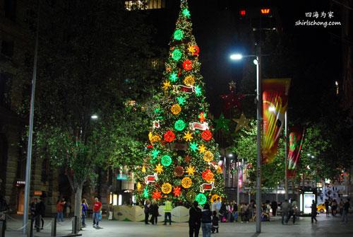 Giant Christmas tree in Sydney