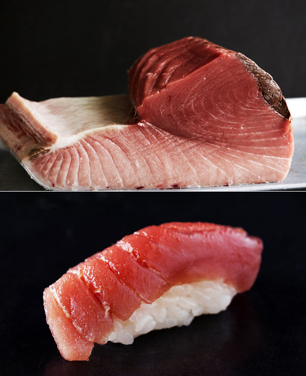 Bluefin Tuna Image
