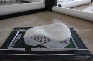 www.shirshakbaniya.wordpress.com_2110 copy