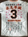 giants-embroidery3-0031