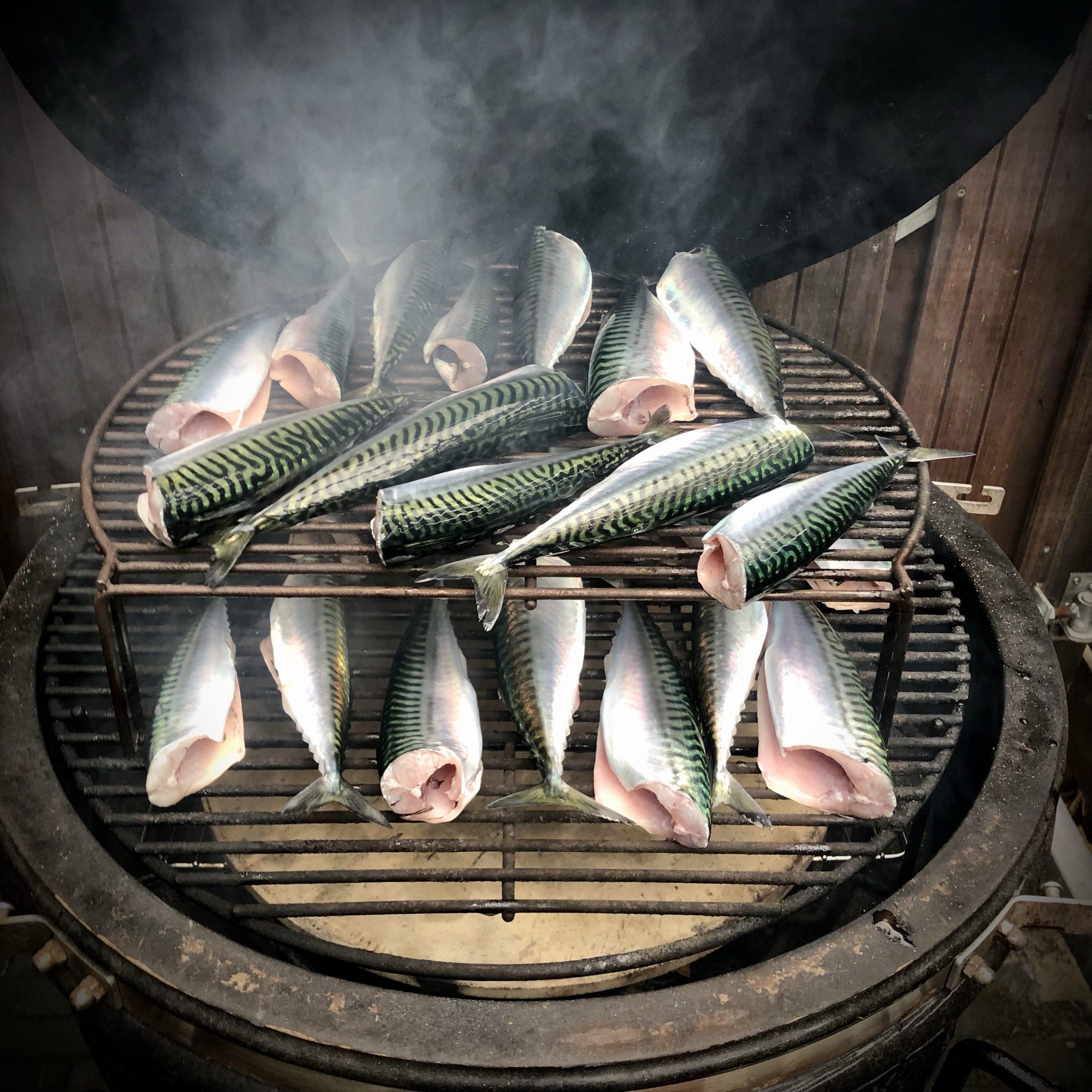Makreelvissen op zee en daarna thuis roken
